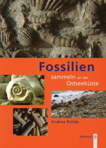 Fossilien sammeln an der Ostseeküste, Rohde