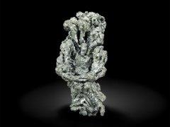 Aguilarit-3cm-SanJoseMSanJosedelProgresoOcotlanDistOaxacaMexJan18-Fabre.jpg