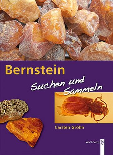 Bernstein - Suchen und Sammeln, Carsten Gröhn