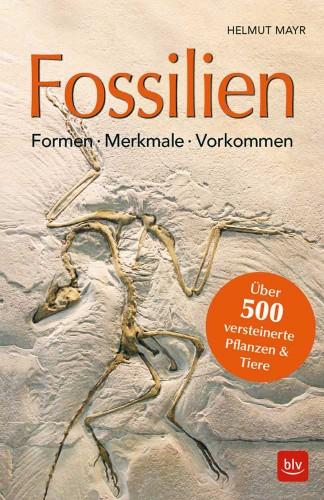 Fossilien – Formen, Merkmale, Vorkommen, Mayr H.