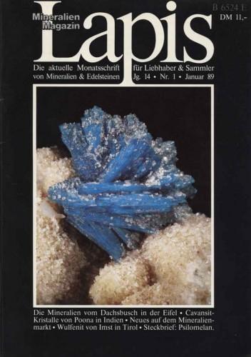 LAPIS Jahrgang 1989