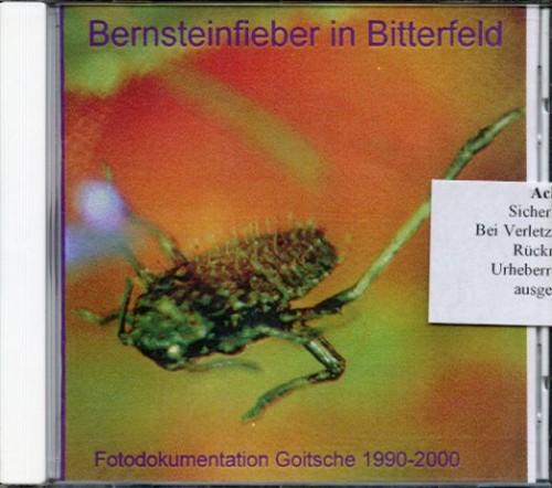 Bernsteinfieber in Bitterfeld - Fotodokumentation über die Goitsche