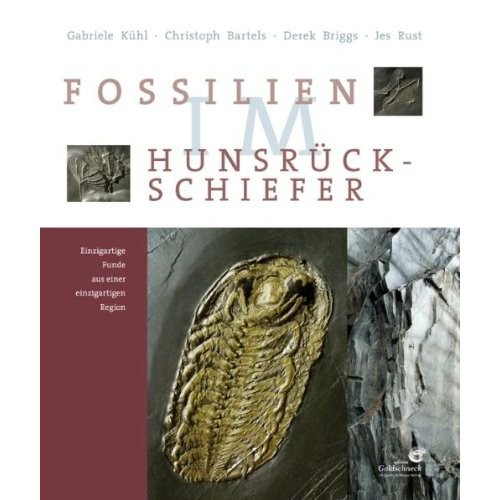 Fossilien im Hunsrück- Schiefer, Kühl