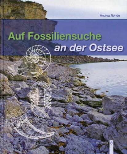 Auf Fossiliensuche an der Ostsee, Rohde