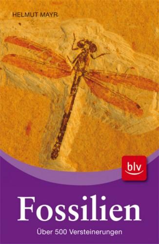 Fossilien über 500 Versteinerungen,blv,Mayr